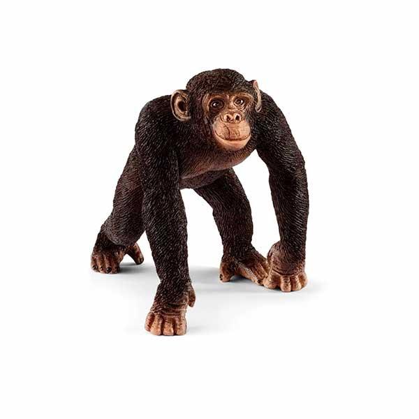 Ximpance Mascle Schleich - Imatge 1
