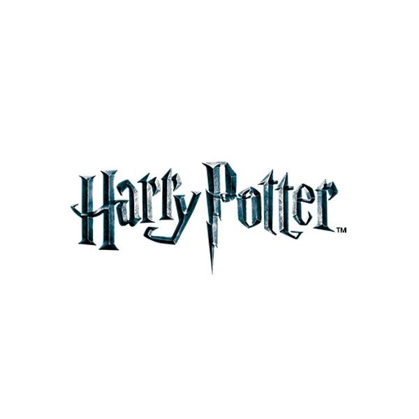 Disfraces Harry Potter Niño