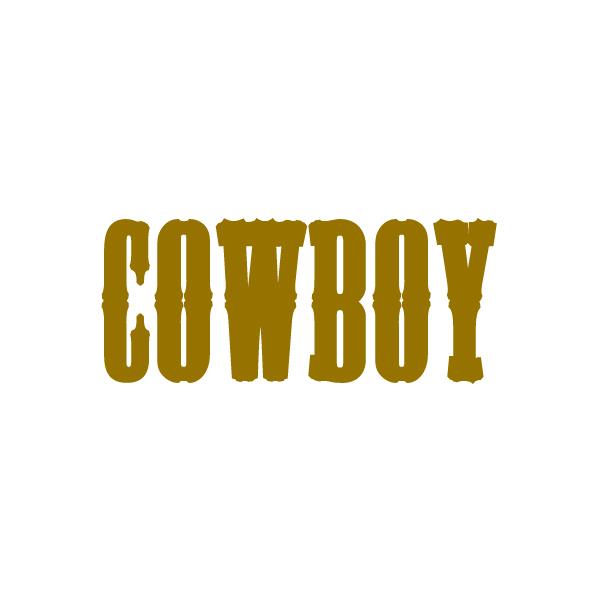 Disfraces Cowboy Niño