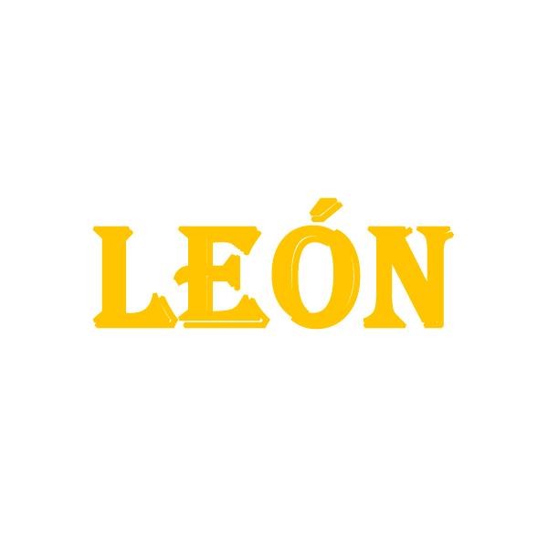 Disfraces León Niño