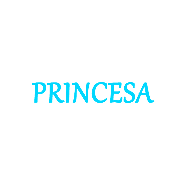 Disfraces Princesa Niña