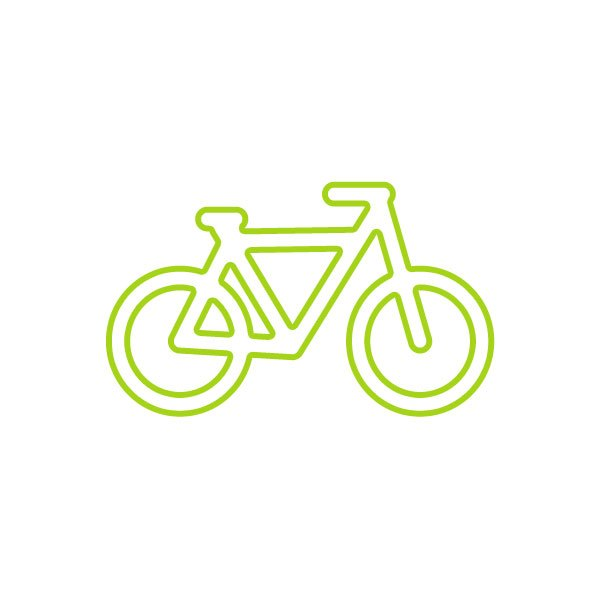 Bicicletes Frozen