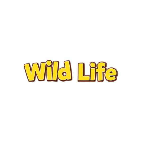 Bonecos e Figuras Wild Life